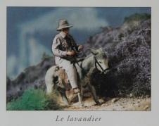 2014Lavandier-PF