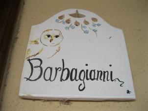 Il barbagianni = l'effraie