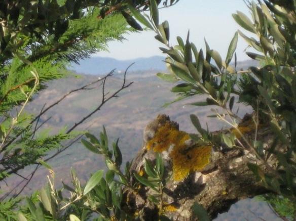 Acerenza - Loggia del Monaco - Vue 2